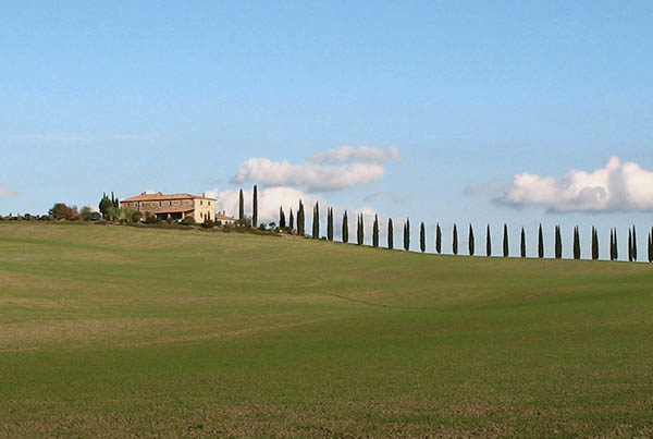 Tour amongst the hilltowns in Tuscany.