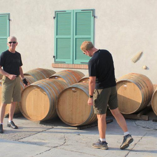 Wine tasting in Piedmont's Barolo region