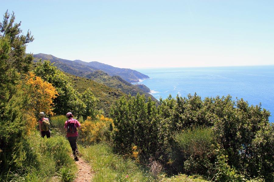 hiking in cinque terre and portofino-panorama