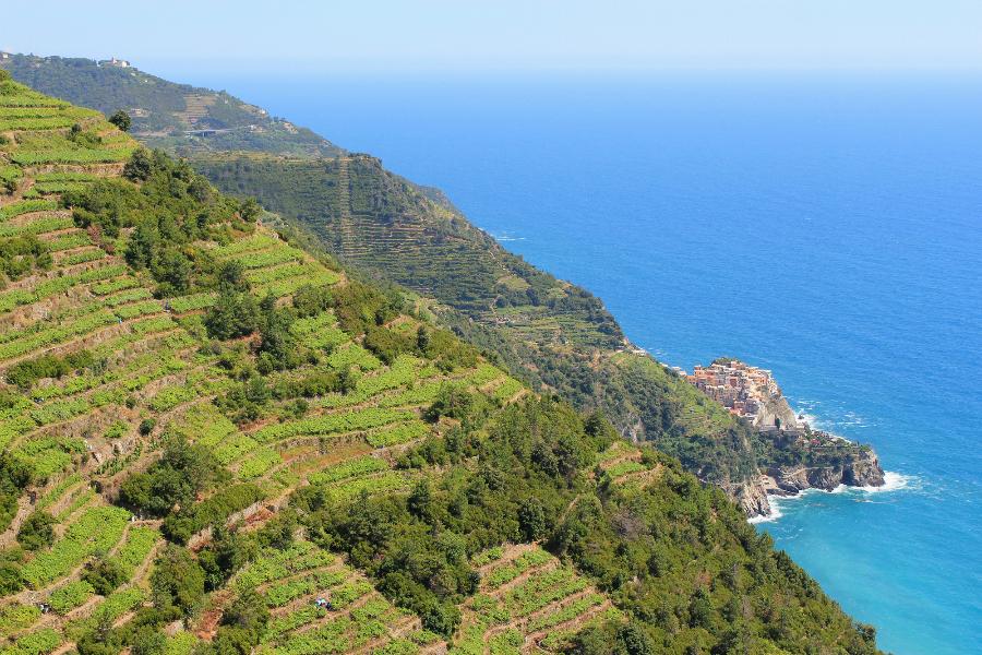 hiking in cinque terre and portofino-manarola