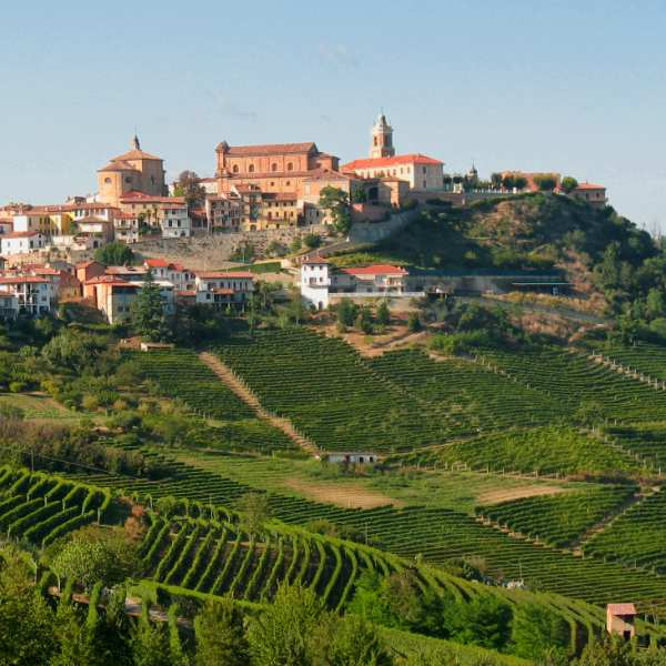 the langhe - pidmont's wine country - la morra
