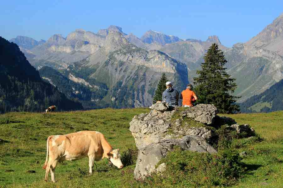 from the eiger to the matterhorn | kandersteg valley