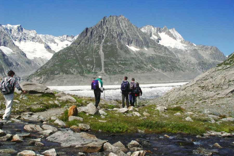 great walser trail | aletsch glacier