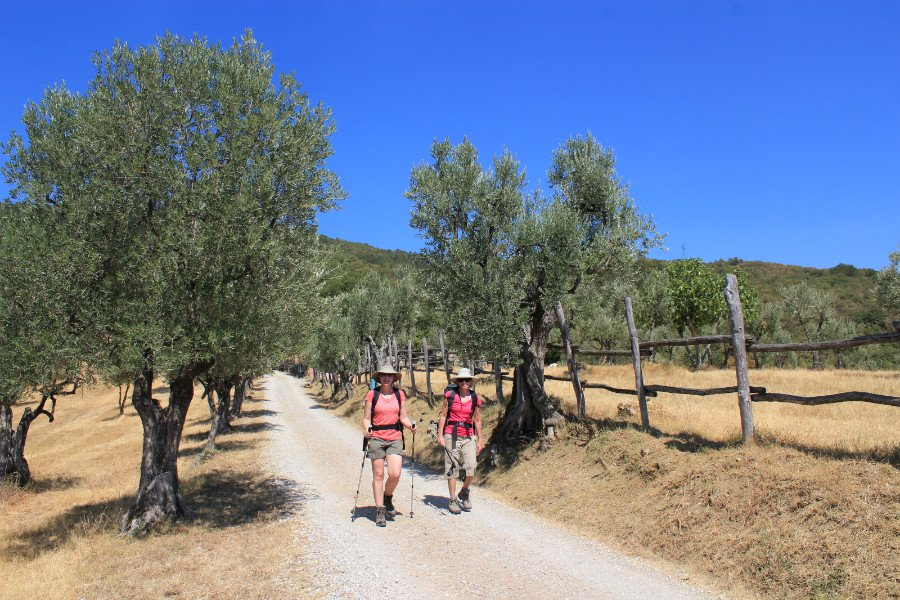gems of Tuscany - Walking