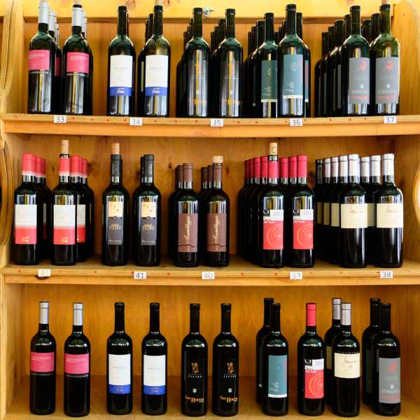 esperienze | degustazioni di vino | vini ticinesi